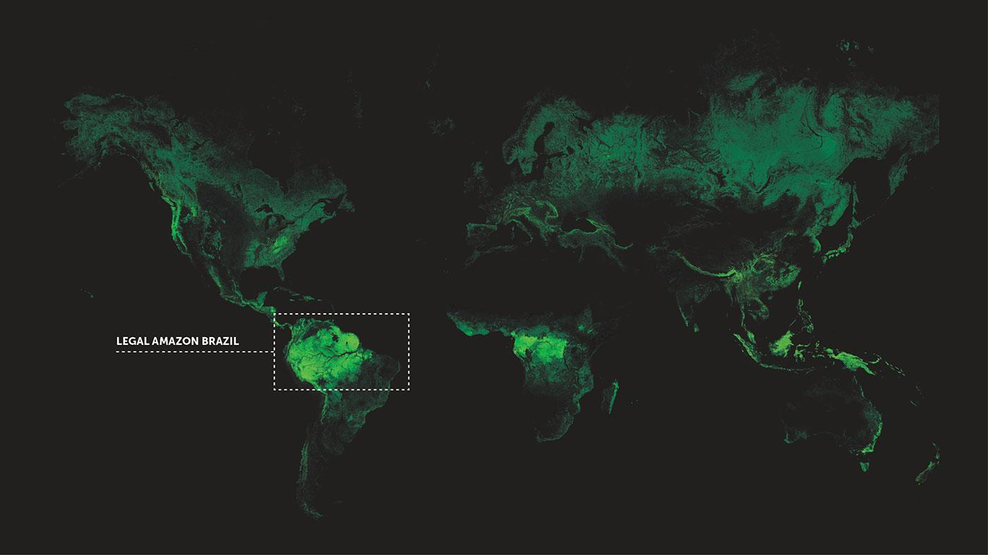 World Vegetation Map – Legal Amazon Brazil