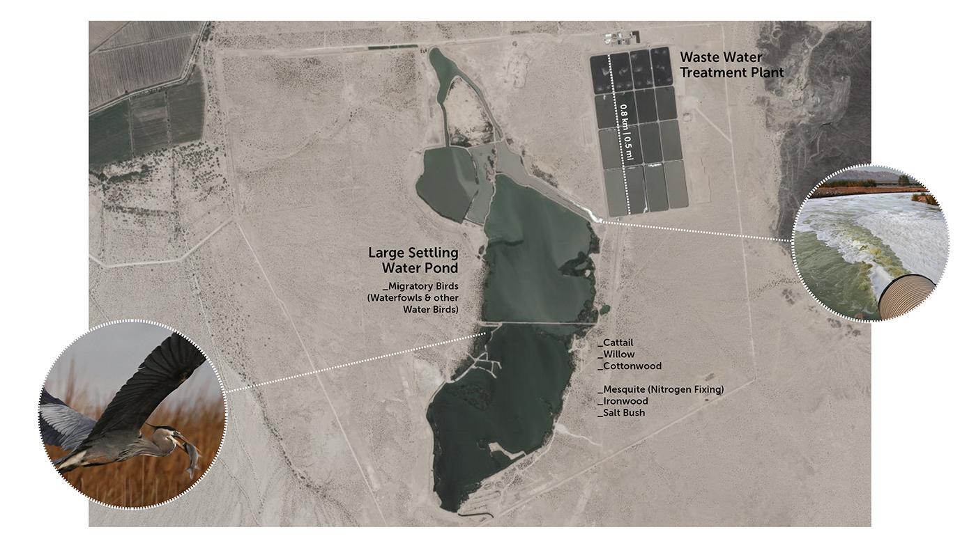 Las Arenitas Waste Water Treatment
