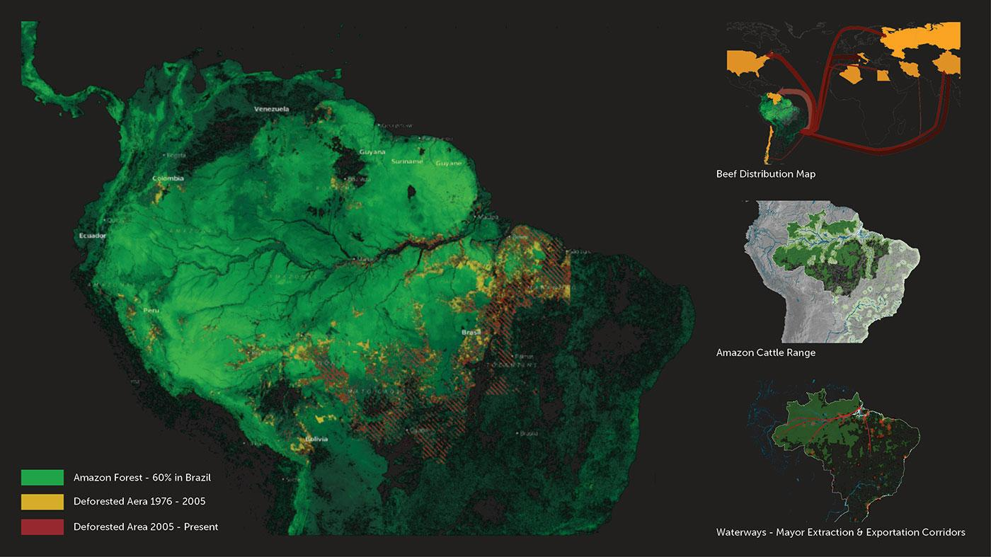 Deforestation Map vis-à-vis Cattle Production