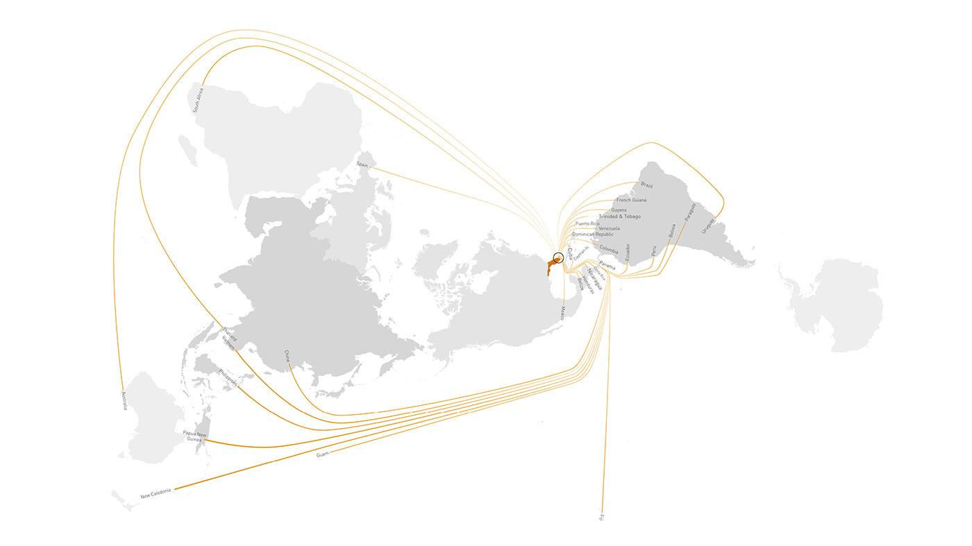 Coconut Shipping Routes to Miami